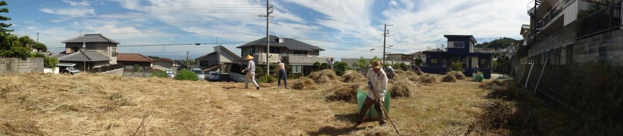 みさき公園団地:刈り取った草の片付け②_c0108460_1357822.jpg
