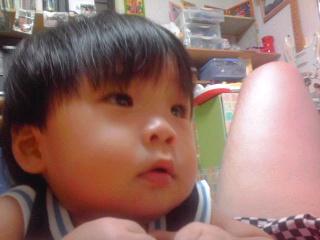 c0023278_2011135.jpg