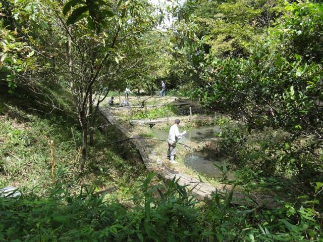 定例活動日:草刈り他_c0108460_17475477.jpg