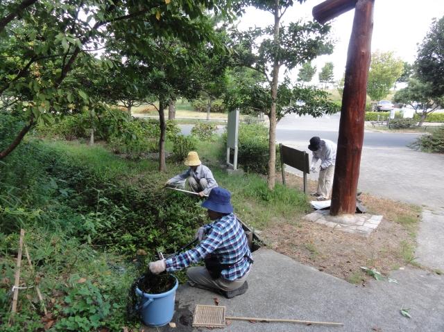 定例活動日:草刈り他_c0108460_1750435.jpg
