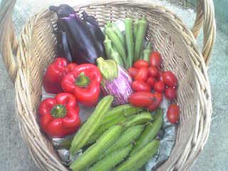 今日のお野菜_a0138985_19101921.jpg