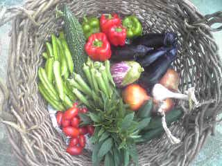 今日のお野菜_a0138985_1911438.jpg