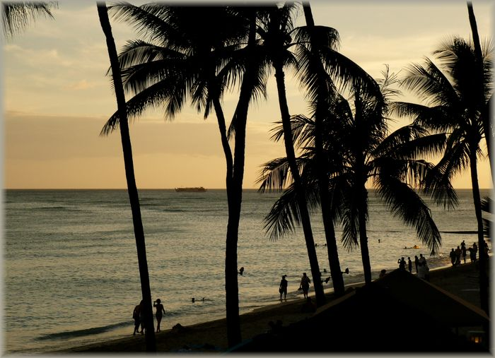 ハワイ旅行記 23_b0093088_829971.jpg