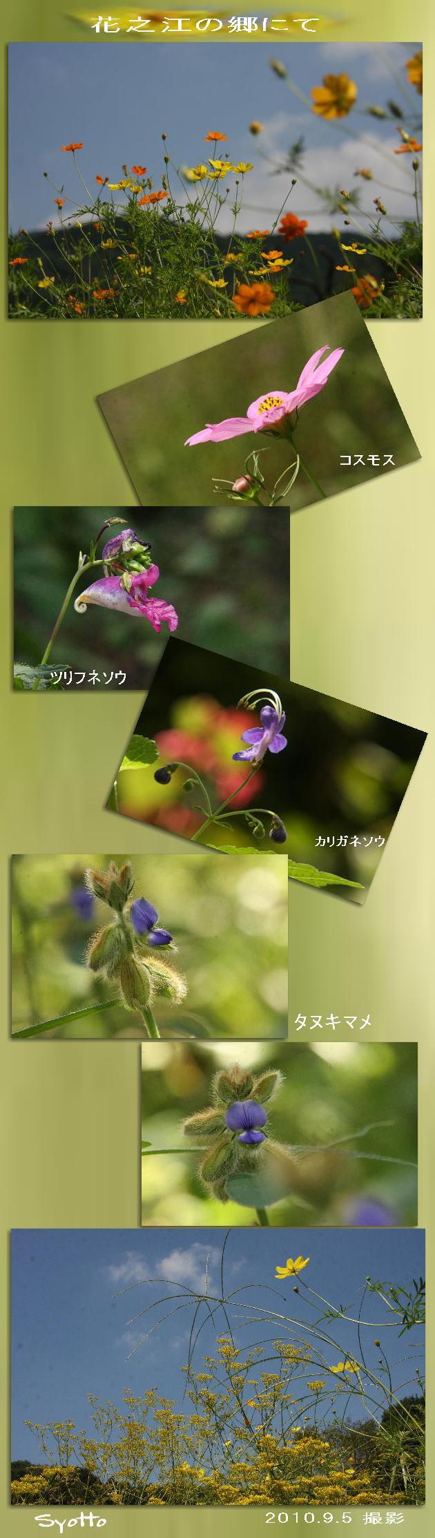f0164592_7171161.jpg
