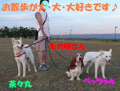 f0121712_1692572.jpg