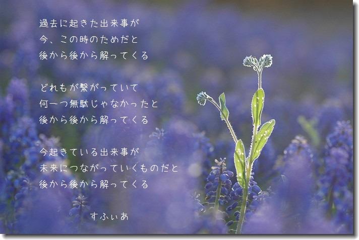 b0152416_0291237.jpg