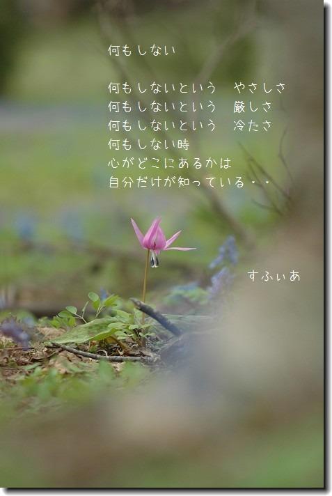 b0152416_1973475.jpg