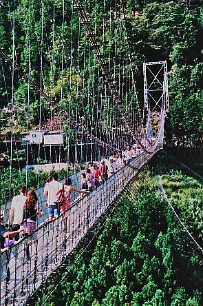 谷瀬の吊り橋_e0156251_21572558.jpg