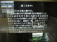 f0103873_1950015.jpg