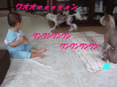 f0179203_16341040.jpg