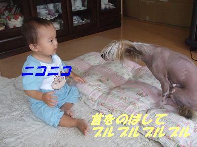 f0179203_16343360.jpg