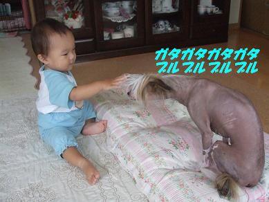 f0179203_16343872.jpg