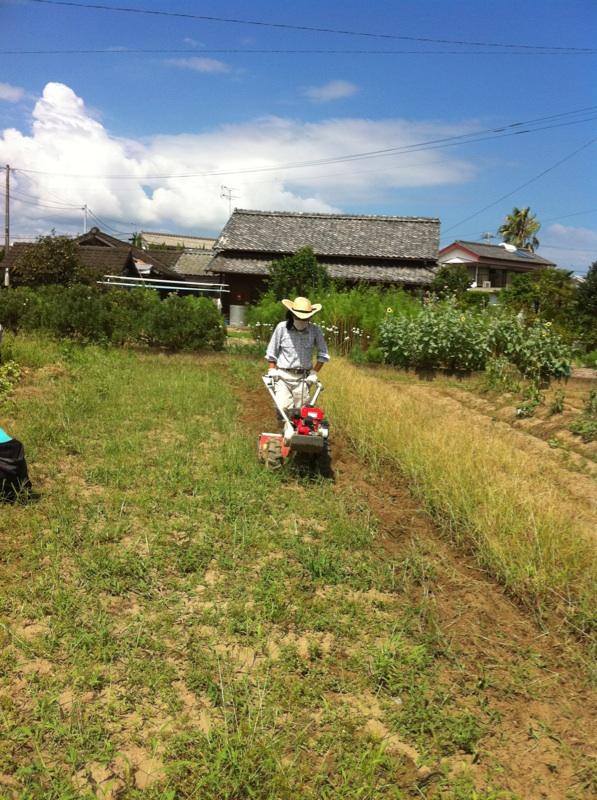 農業体験。_c0200506_1729404.jpg