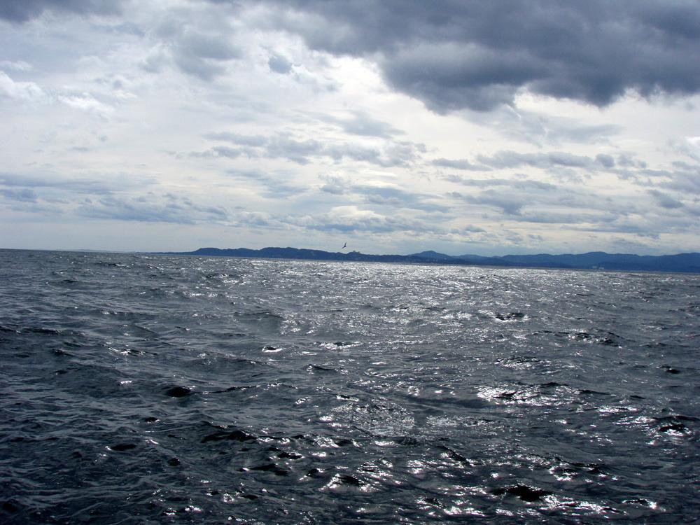 2010年9月8日(水) 知多半島 大井港より釣行_d0171823_054865.jpg