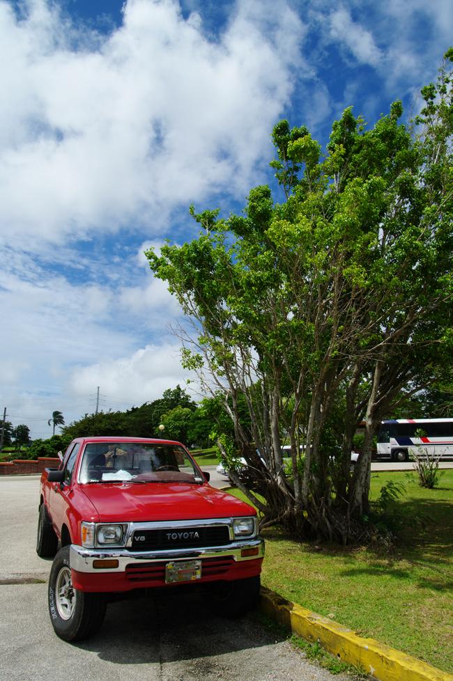 2010年夏のグアム旅行(2) 2日目の①~アプガン砦、ラッテストーン公園~_c0223825_2314242.jpg