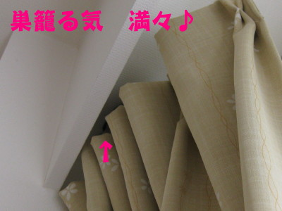 b0158061_1938105.jpg