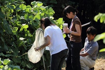 ★鳥類園は若者たちで賑わっています_e0046474_22402770.jpg