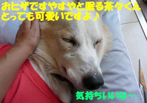f0121712_13544071.jpg