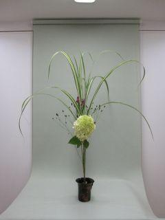 自作花器にいける_c0165824_16104190.jpg