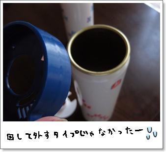 e0182726_1053485.jpg