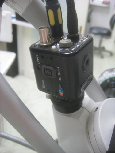 2010.09.09 顕微鏡の映像_b0112648_0532858.jpg