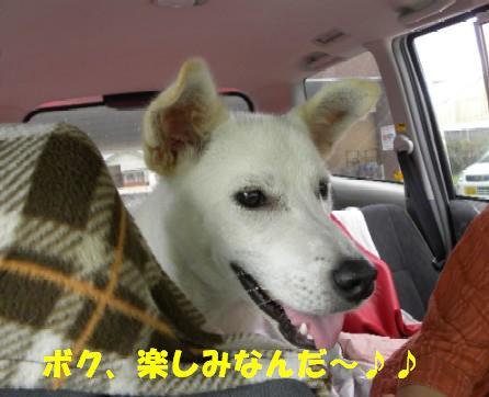 b0201756_011387.jpg