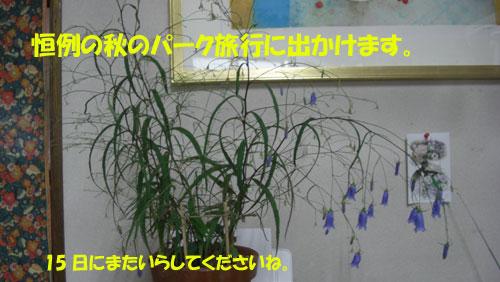 e0001808_1610830.jpg