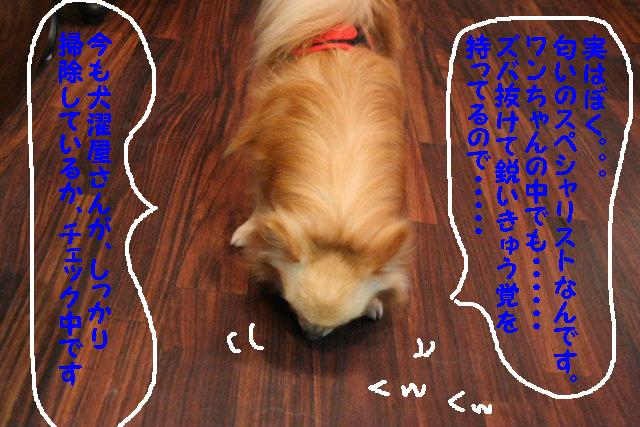 3D_b0130018_183679.jpg