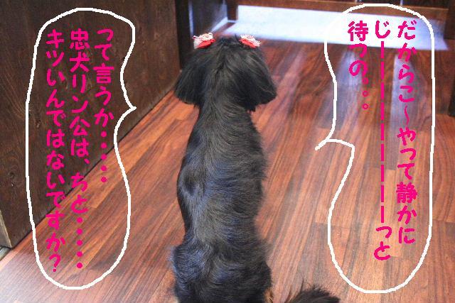 3D_b0130018_184331.jpg