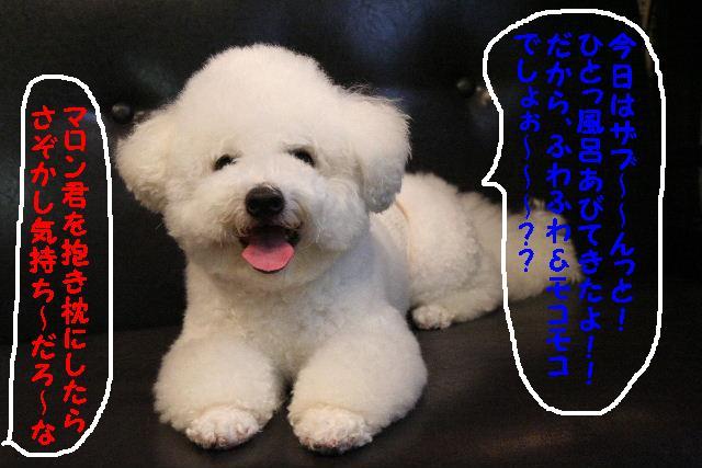 3D_b0130018_1855381.jpg