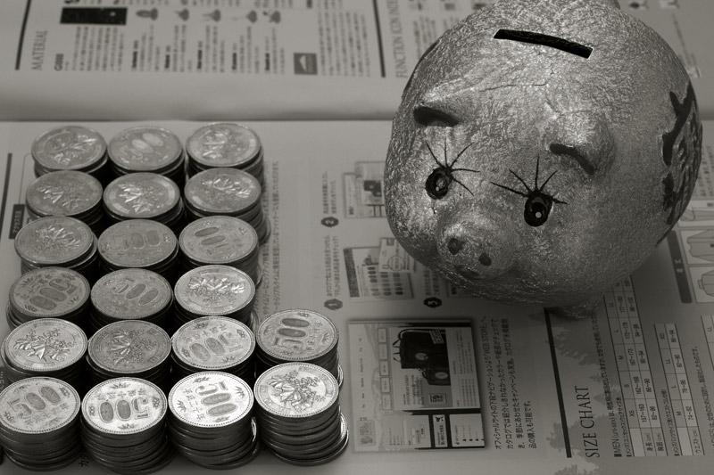 大食いの豚くん_b0023523_1161015.jpg