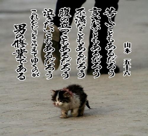 f0084576_0253514.jpg