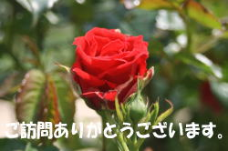 b0136683_170457.jpg