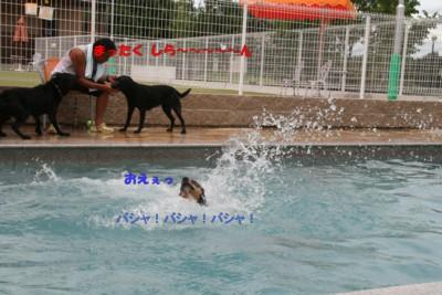 2010.09.12_c0203505_14222921.jpg