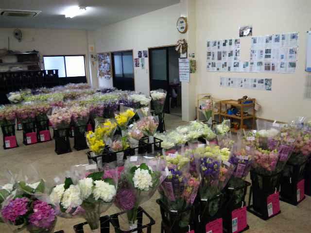 花の表情_d0099708_11325183.jpg
