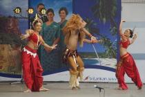 スリランカフェスティバル2010@代々木公園/9.11メモリアル@むさしの教会_f0006713_502738.jpg
