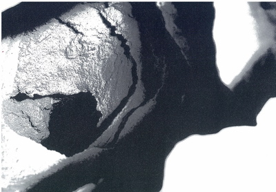 vol.793. ギャラリー揺 シリーズ企画「移行」3 かのうたかお展へ行こう_b0081338_0563028.jpg