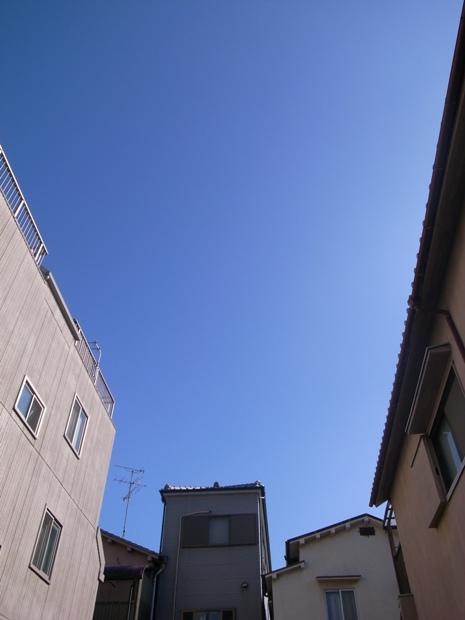 f0176239_200921.jpg