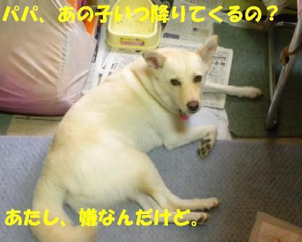 b0201756_20131458.jpg