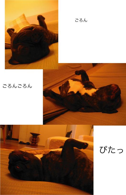 f0230080_1451976.jpg
