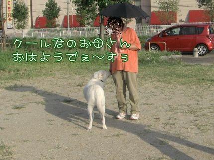 c0107886_2011506.jpg