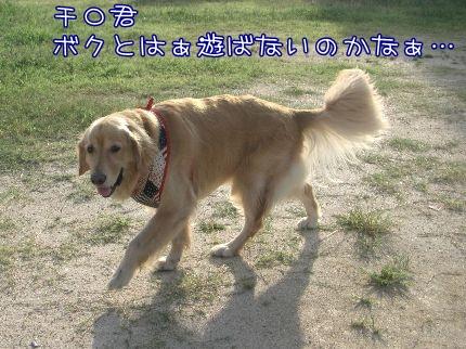 c0107886_2012093.jpg
