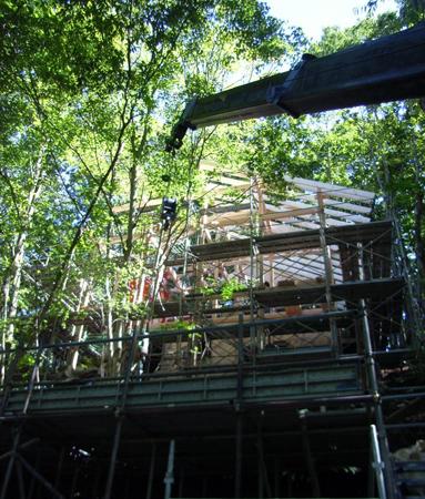 森の中で上棟_b0038919_1745840.jpg