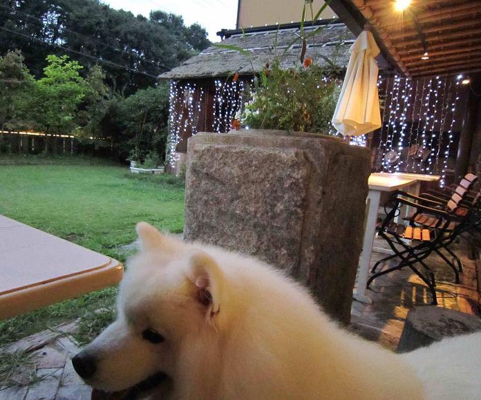 比叡山の麓_b0177436_00561.jpg