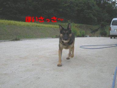 b0113663_8305976.jpg