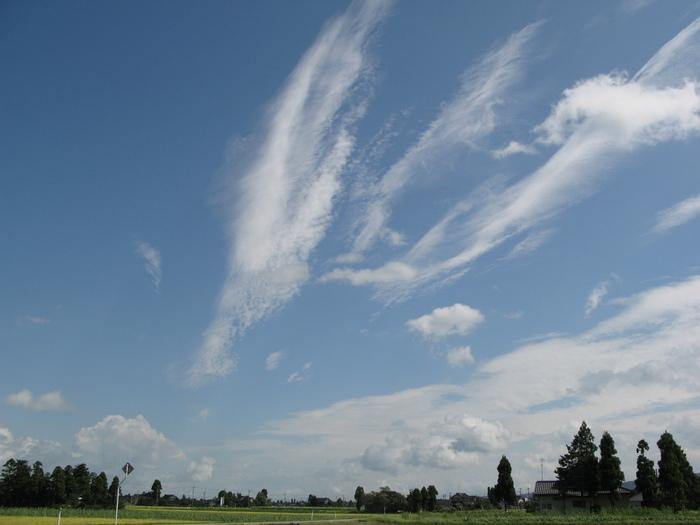 空がとても高くて・・・_d0047885_1840340.jpg