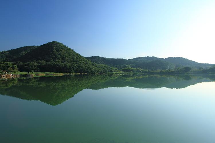 早朝の嵐山・嵯峨野_e0051888_22314212.jpg