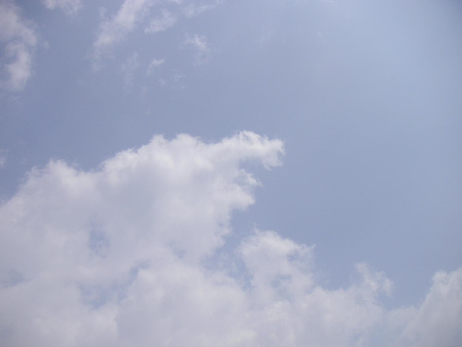 秋津風乃葉~!?_f0146802_17411234.jpg