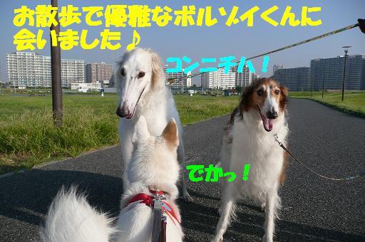 f0121712_13465740.jpg
