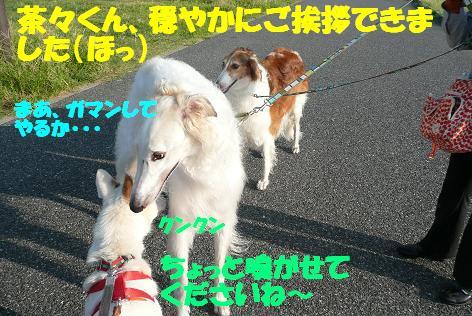 f0121712_13471674.jpg